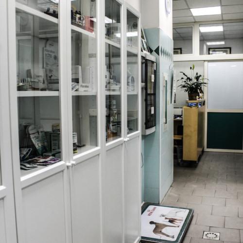 Veterinaria Villa Bonelli - Roma